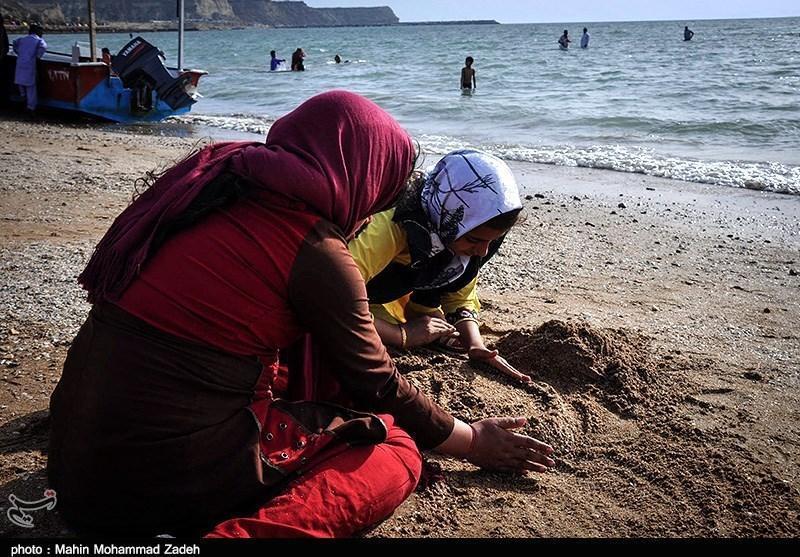 حضور بیش از 49 هزار مسافر نوروزی در شهرستان چابهار
